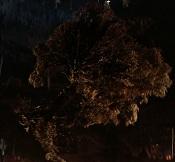5. Isengard Tree